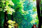 Фотограф на свадьбу. 1500 р./час